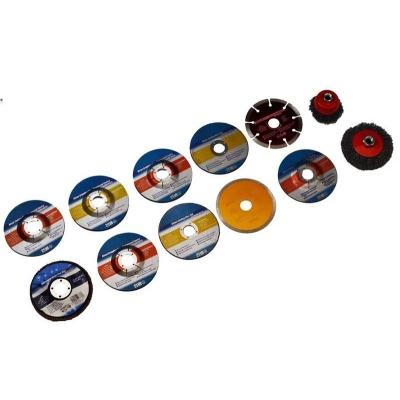 Juego de 12 discos y cepillos para radial